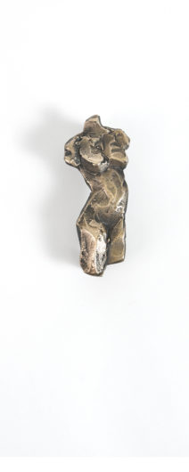 hermera body